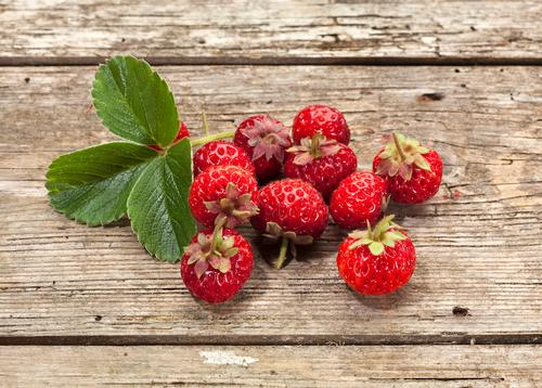 Strawberry x (Fragaria)