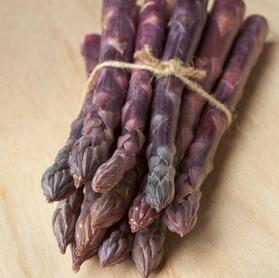 Asparagus 'Sweet Purple'